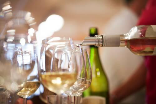 Wijnproeverij van een Vinoloog!