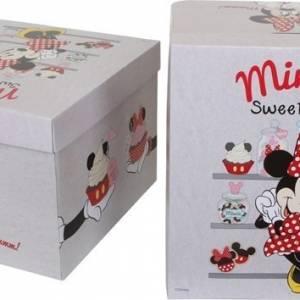 Disney Minnie Mouse Opbergdozen Set