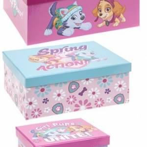 Nickelodeon Paw Patrol opbergboxen 3 stuks roze/blauw