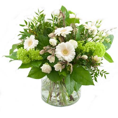 Witte voorjaarsbloemen
