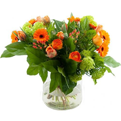 Oranje voorjaarsbloemen